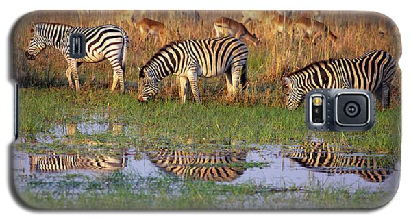 Zebras In Botswana Galaxy S5 Case