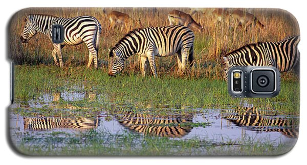 Zebras In Botswana Galaxy S5 Case