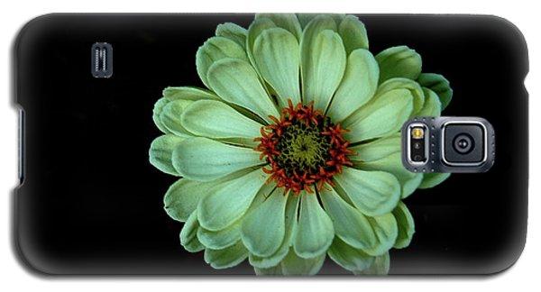 Zinnia Joy Galaxy S5 Case