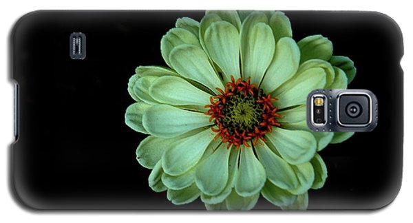 Zinnia Joy Galaxy S5 Case