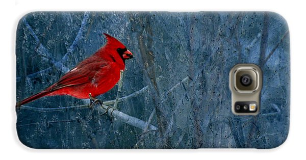 Northern Cardinal Galaxy S6 Case