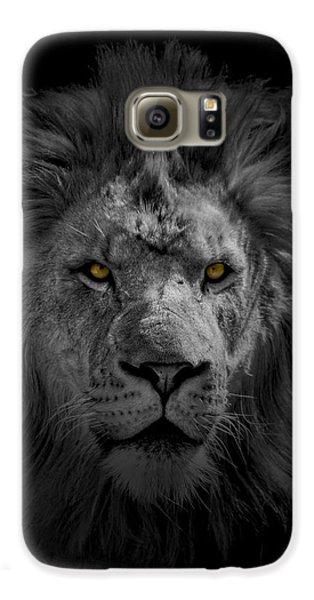 African Lion Galaxy S6 Case