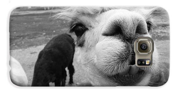 Alpaca Face Galaxy S6 Case