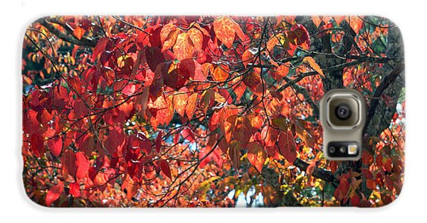 Autumn Leaves Galaxy S6 Case