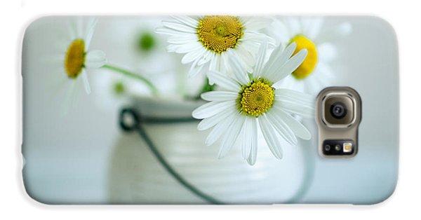 Daisy Galaxy S6 Case - Daisy Flowers by Nailia Schwarz