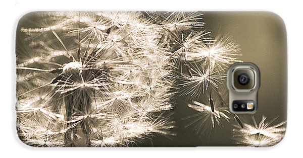 Galaxy S6 Case featuring the photograph Dandelion by Yulia Kazansky