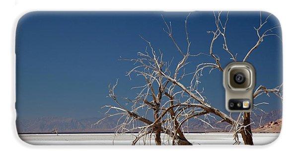 Dead Trees On Salt Flat Galaxy S6 Case by Jim West