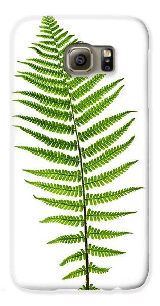 Fern Leaf Galaxy S6 Case