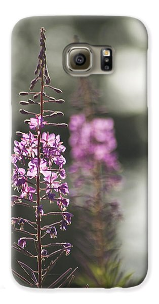 Galaxy S6 Case featuring the photograph Fireweed by Yulia Kazansky