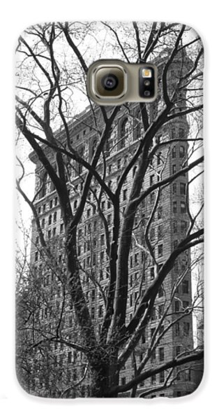 Flat Iron Tree Galaxy S6 Case