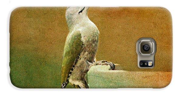 Grey-headed Woodpecker Galaxy S6 Case by Heike Hultsch