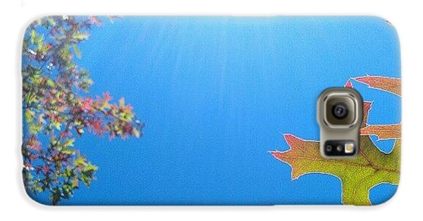 Bright Galaxy S6 Case - Hello Autumn by CML Brown