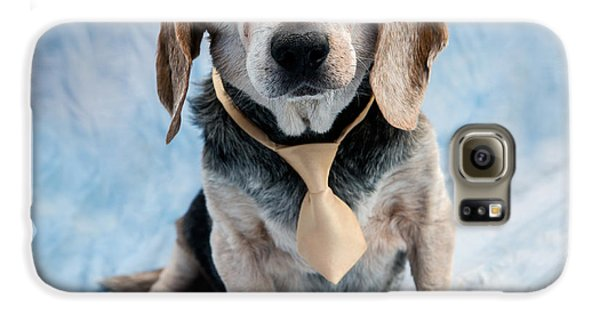 Kippy Beagle Senior And Best Dog Ever Galaxy S6 Case by Iris Richardson
