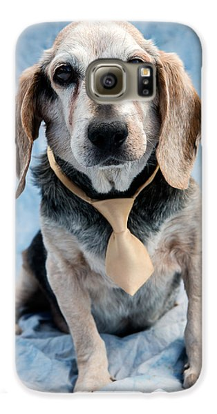 Dog Galaxy S6 Case - Kippy Beagle Senior by Iris Richardson