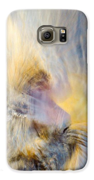 Leibert 6 Galaxy S6 Case