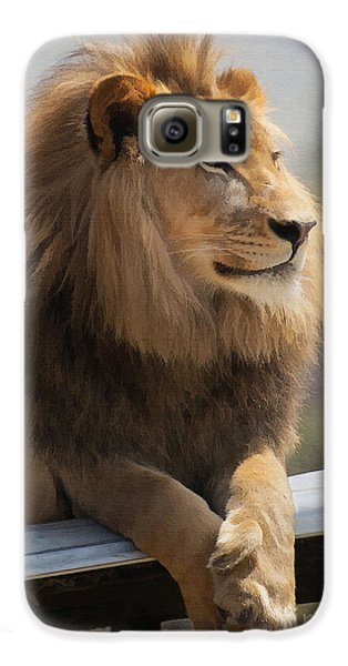 Lion Galaxy S6 Case - Majestic Lion by Sharon Foster