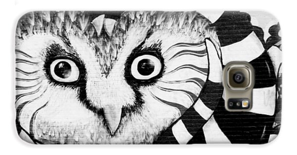 Galaxy S6 Case featuring the photograph Owl Mural by Ricky L Jones