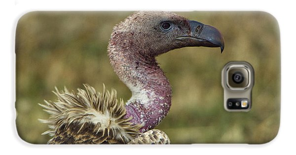 Ruppells Vulture Galaxy S6 Case by John Shaw
