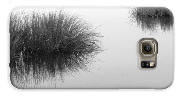 Salt Marsh Galaxy S6 Case