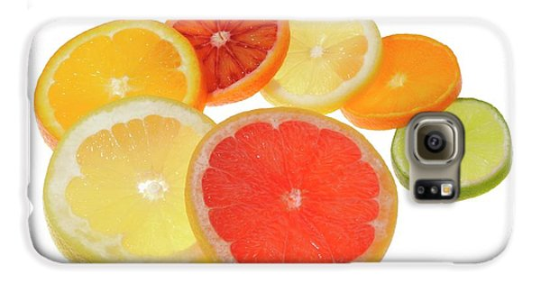 Slices Of Citrus Fruit Galaxy S6 Case by Cordelia Molloy