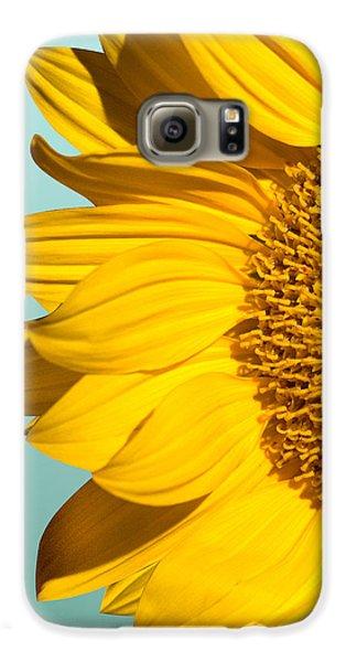 Sunflower Galaxy S6 Case - Sunflower by Mark Ashkenazi