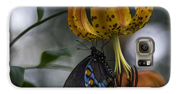 Swallowtail On Turks Cap Galaxy S6 Case