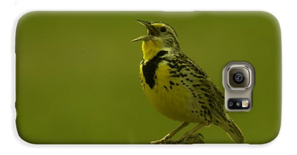 The Meadowlark Sings Galaxy S6 Case by Jeff Swan