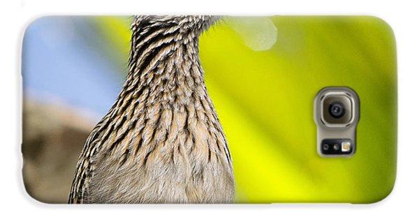 The Roadrunner  Galaxy S6 Case by Saija  Lehtonen