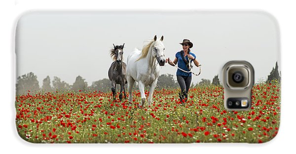 Three At The Poppies' Field... 3 Galaxy S6 Case by Dubi Roman