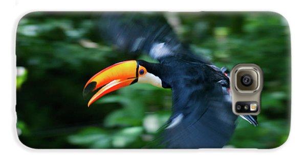 Toco Toucan (ramphastos Toco Galaxy S6 Case