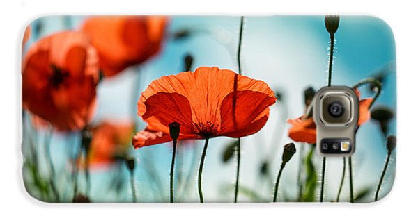 Flowers Galaxy S6 Case - Poppy Meadow by Nailia Schwarz