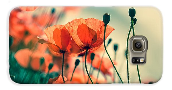 Poppy Meadow Galaxy S6 Case