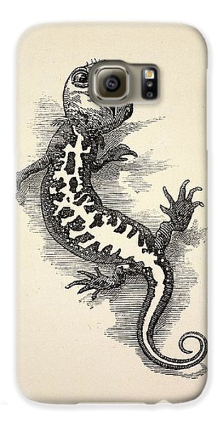 1863 Kingsley Waterbabies Human Newt Galaxy S6 Case by Paul D Stewart