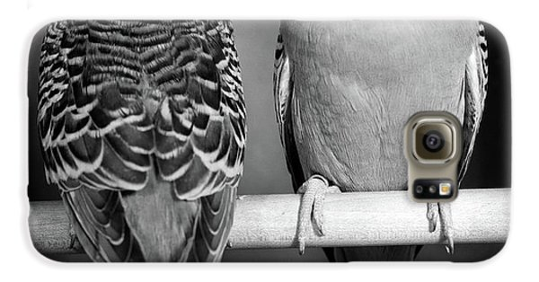 1960s Pair Of Parakeets Perched Galaxy S6 Case
