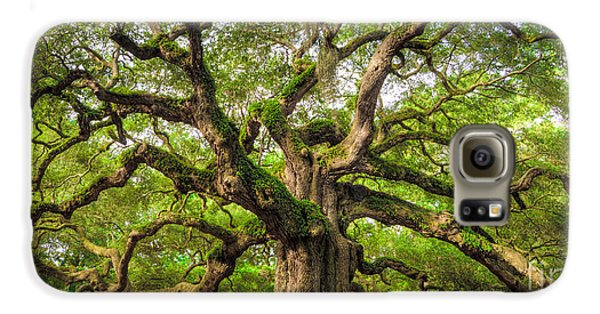 Largemouth Bass Galaxy S6 Case - Angel Oak Tree Of Life by Dustin K Ryan