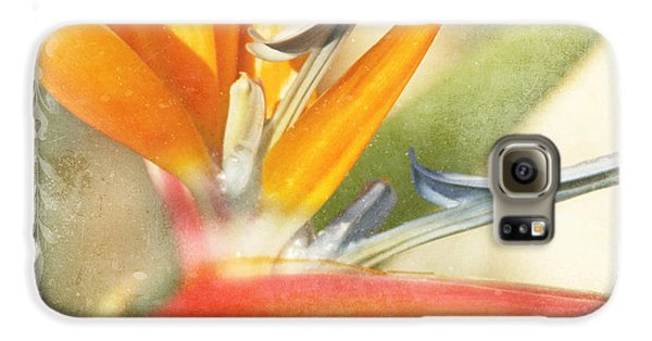 Bird Of Paradise - Strelitzea Reginae - Tropical Flowers Of Hawaii Galaxy S6 Case