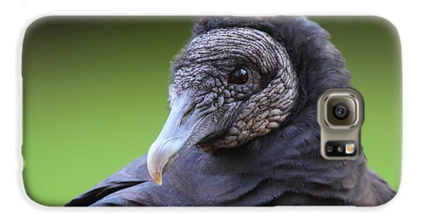Black Vulture Portrait Galaxy S6 Case by Bruce J Robinson