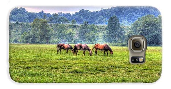 Horses In A Field Galaxy S6 Case