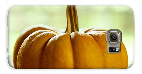 Small Orange Pumpkin Galaxy S6 Case by Iris Richardson