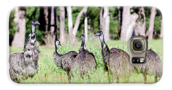 Emu (dromaius Novaehollandiae Galaxy S6 Case by Martin Zwick