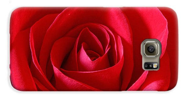 Red Rose Galaxy S6 Case