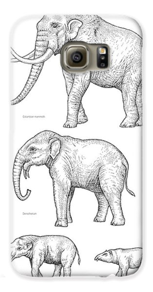 Elephant Evolution, Artwork Galaxy S6 Case by Gary Hincks