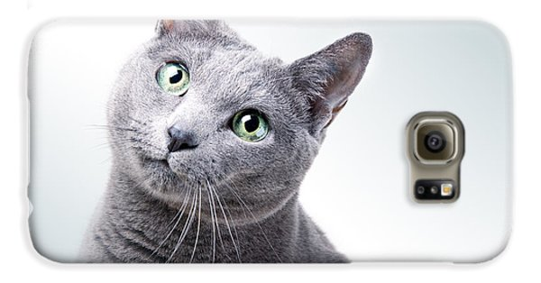 Cat Galaxy S6 Case - Russian Blue Cat by Nailia Schwarz