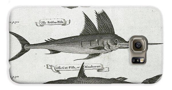 Fish Galaxy S6 Case