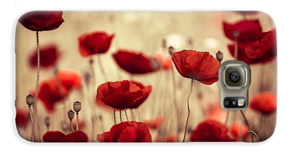 Flowers Galaxy S6 Case - Summer Poppy by Nailia Schwarz