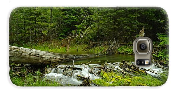 A Beaver Dam Overflowing Galaxy S6 Case by Jeff Swan