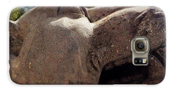 Detail Galaxy S6 Case - Big Cat Sculpture by Sean Cahill
