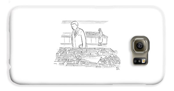 A Laboratory Scientist Looks On As The Walls Galaxy S6 Case by Paul Noth