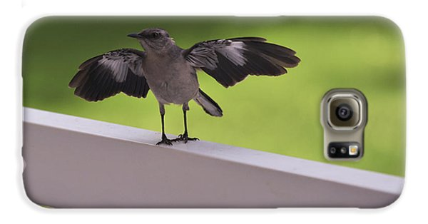 A Little Visitor Northern Mockingbird Galaxy S6 Case by Terry DeLuco