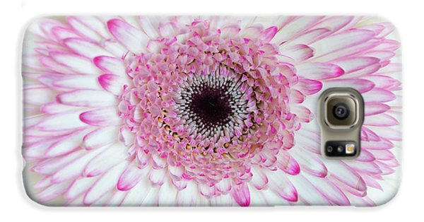 A Million Petals Galaxy S6 Case